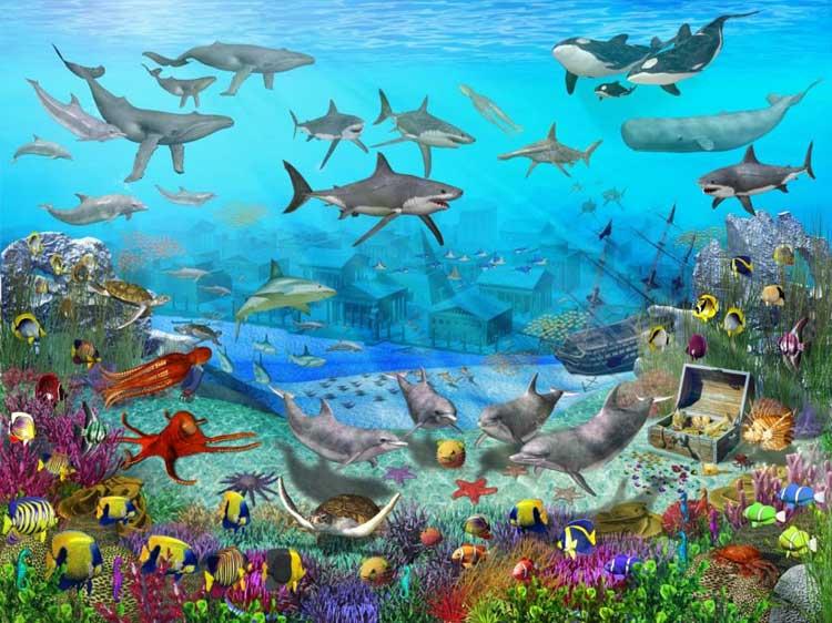 Fototapete Unterwasserwelt : Walltastic Fototapete Unterwasserwelt