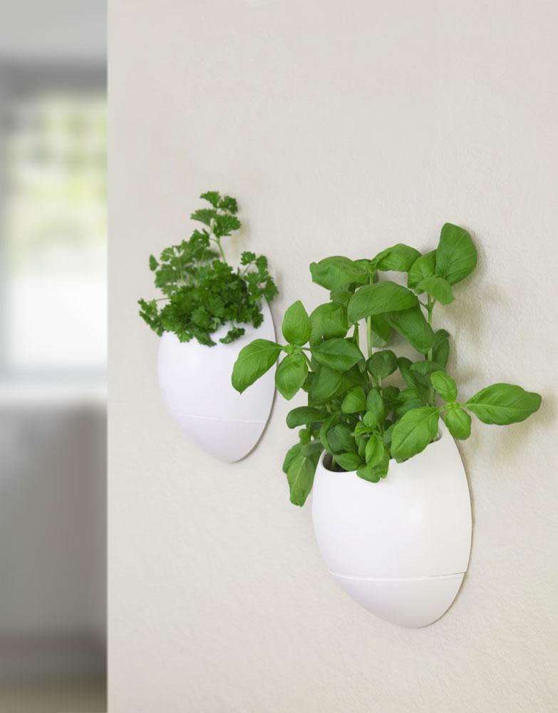 Eco Pod - Selbst wässernder Pflanzentopf (2er Pack)