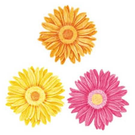 Wandaufkleber Wallies Motiv-Sticker (Cutouts) Gerber Daisies