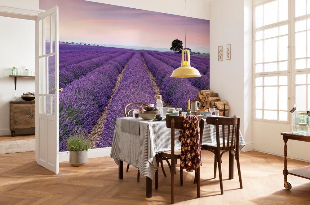 Vlies Fototapete Provence