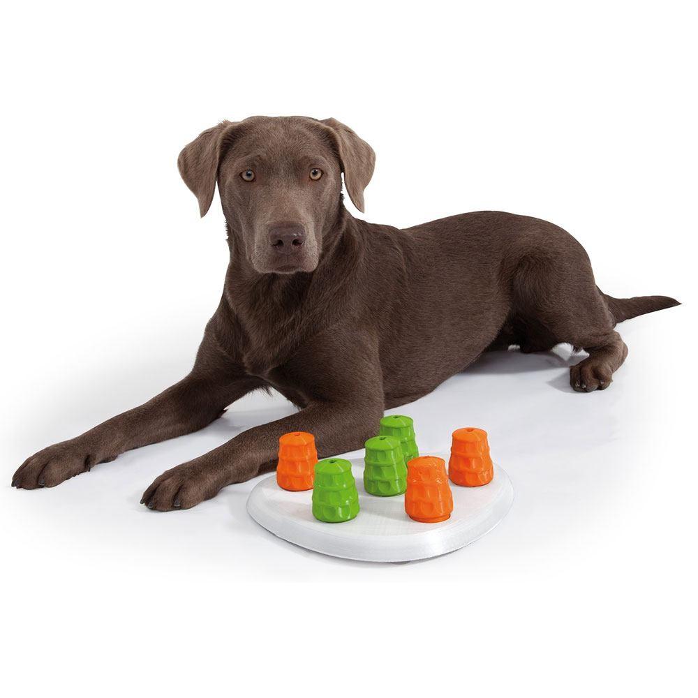 Edupet Hundespielzeug - Dog Sniffer