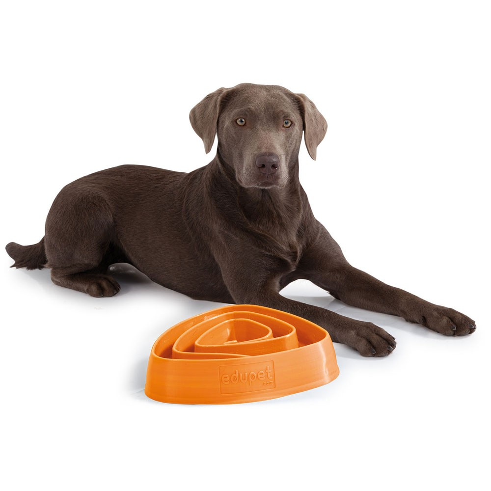 Edupet Hundespielzeug -Dog Bowl, 28,5 cm orange